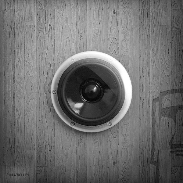 WKW03003 - loudspeak-03